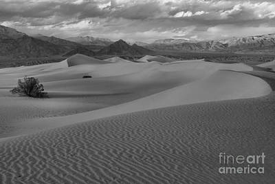 Death Valley Dunes Black And White Poster