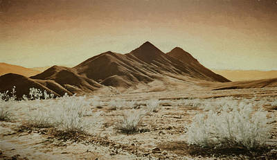 Death Valley Landscape Poster by Jim Cook