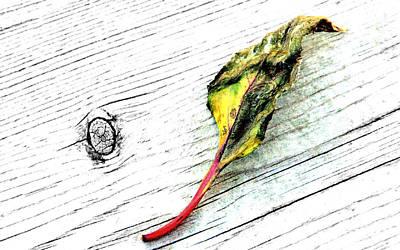 Deck Leaf Poster