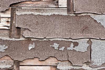 Decomposing Asbestos Shingles Poster by Inga Spence