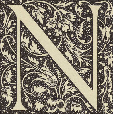 Decorative N Poster