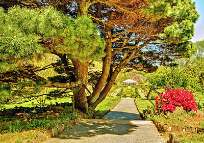 Deep Cut Gardens Landscape Middletown Nj Poster by Geraldine Scull