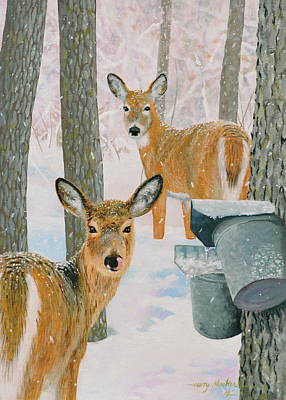 Deer And Sap Buckets Poster