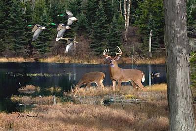 Deer Art- Deer Lake Poster by Dale Kunkel Art