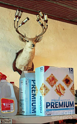 Deer At Salt Lick Poster