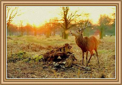 Deer At Sunrise H B With Decorative Ornate Printed Frame. Poster