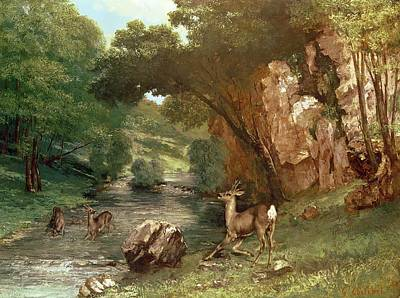 Deer By A River Poster by Gustave Courbet