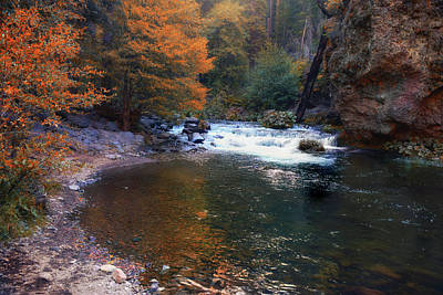Deer Creek In Autumn Poster