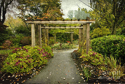 Fall In The Garden At Deer Lake Poster by Maria Janicki