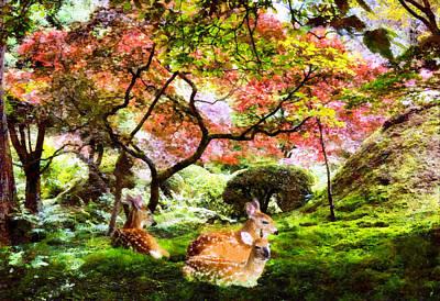 Deer Relaxing In A Meadow Poster