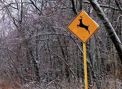 Deer Running In The Forest Poster by Robert Frank Gabriel