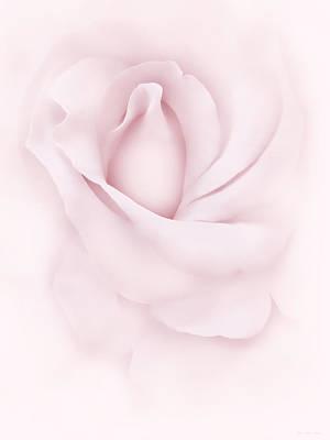 Delicate Pink Rose Flower Poster