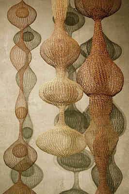 Poster featuring the photograph Delicate Shapes by Roger Mullenhour
