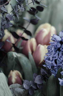 Delicate Springtime Poster