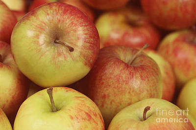 Delicious Apple Fruit Background Poster