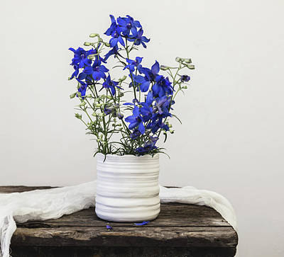 Poster featuring the photograph Delphinium Blue by Kim Hojnacki