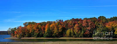 Delta Lake State Park Foliage Poster by Diane E Berry