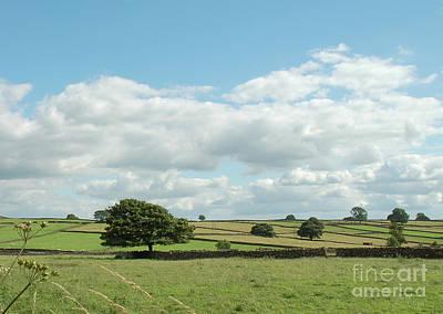 Derbyshire Landscape Poster by Mini Arora