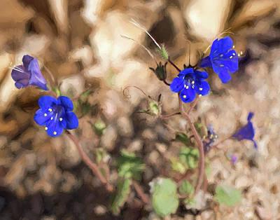 Desert Blue Bells At Joshua Tree National Park Poster by Penny Lisowski