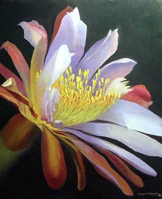 Desert Cactus Flower Poster