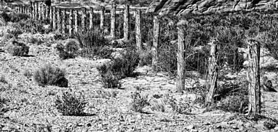 Desert Fence Poster