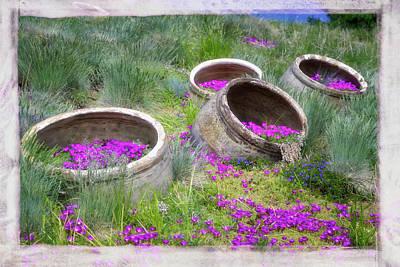 Desert Flowers Poster by Joan Carroll