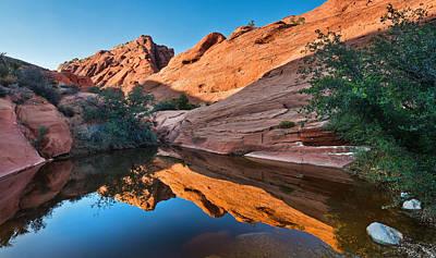 Desert Mirror Poster
