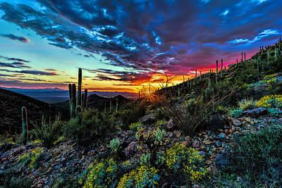 Desert Sunset Hdr 01 Poster