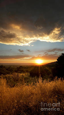 Desert Sunset Over Albuquerque Poster