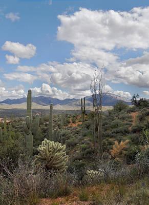 Desert Vista Poster by Gordon Beck