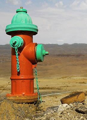 Desert Water Poster