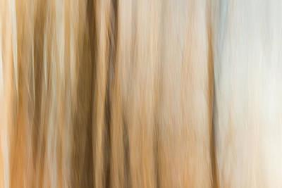 Desert Wind Poster