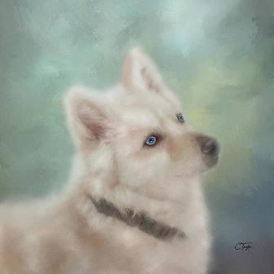 Diamond, The White Shepherd Poster
