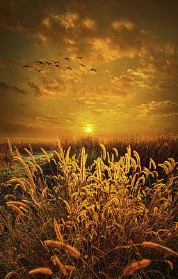 Did I Hear Someone Whisper Poster by Phil Koch