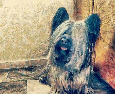 Did You Say Bacon?  Skye Terrier Poster