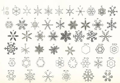 Different Forms Of Snow And Hailstones Poster by Vintage Design Pics
