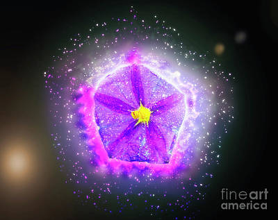Digitally Manipulated Purple Garden Flower  Poster by Ilan Rosen