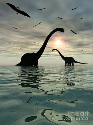 Diplodocus Dinosaurs Bathe In A Large Poster by Mark Stevenson