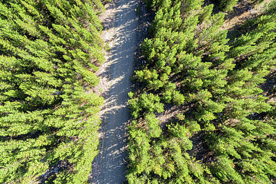 Dirt Road Aerial Poster by Jess Kraft