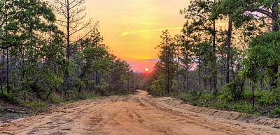 Dirt Road Sunset Poster by JC Findley