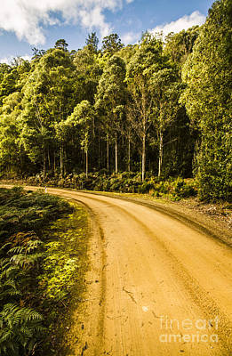 Dirt Roads And Rainforest Scenes Poster
