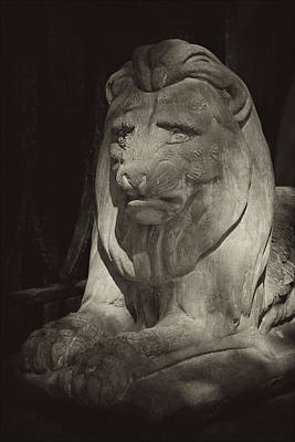 Disapproving Stone Lion Poster by Robert Ullmann