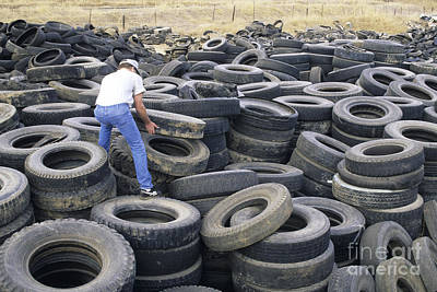 Discarded Old Tires Piled For Recycling Poster by Inga Spence