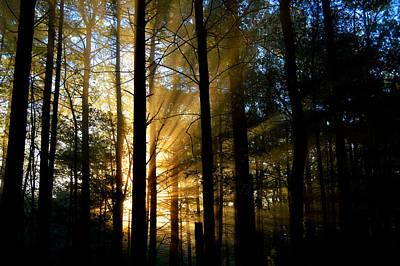 Divine Rays Of Sunshine Poster