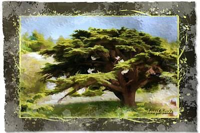 Do-00318 Cedar Barouk - Framed Poster