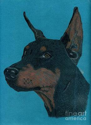 Poster featuring the drawing Doberman Pincher by Terri Mills