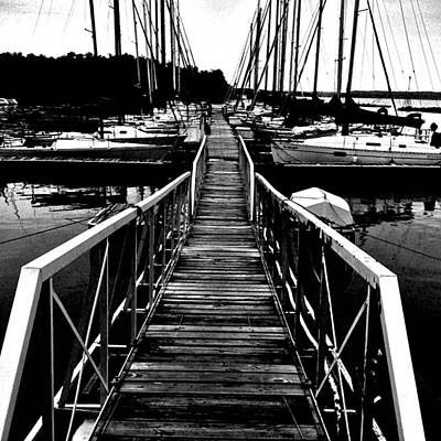Dock And Sailboats Poster
