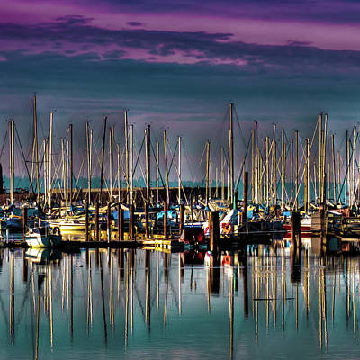 Docked Sailboats Poster by David Patterson