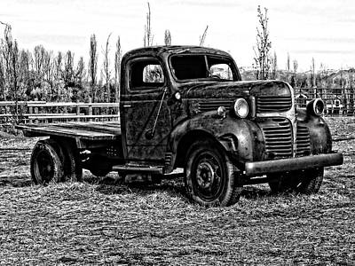 Dodge On The Farm Bw Poster by Dilectus Rex
