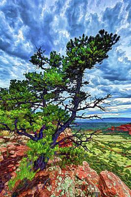 Doe Mountain Pinyon Poster by ABeautifulSky Photography